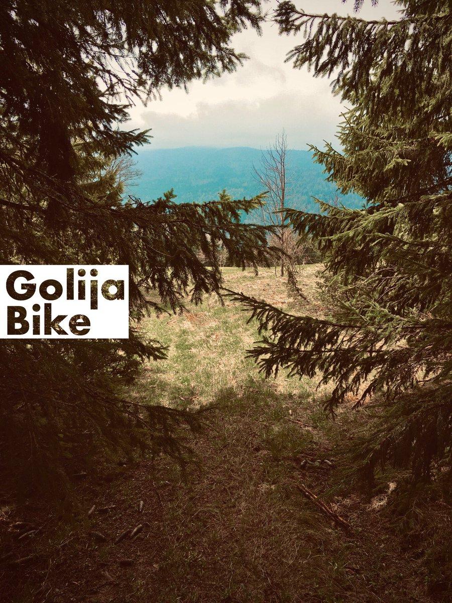 Wanna go to Golija? #GolijaBike #golijacc #Golija https://t.co/vJZdZWbrfN