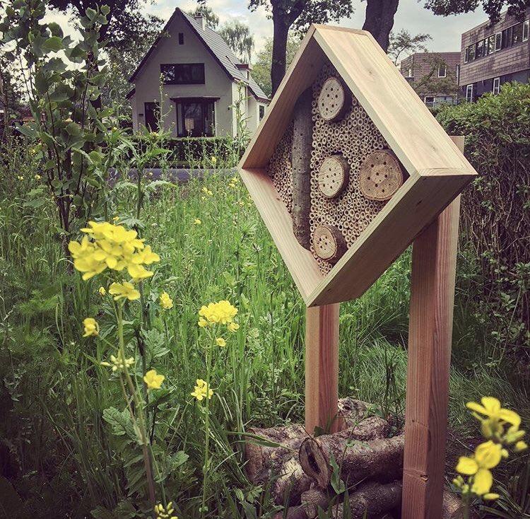Het is de internationale Dag van de Biodiversiteit! Wereldwijd geven we vandaag aandacht aan dit belangrijke thema    Wat ga jij doen om de biodiversiteit te ondersteunen?   #dagvandebiodiversiteit #biodiversiteit #natuur #milieu #bijenhotel #bijen #wildebijen #bestuiverspic.twitter.com/k6o5AP8FSe