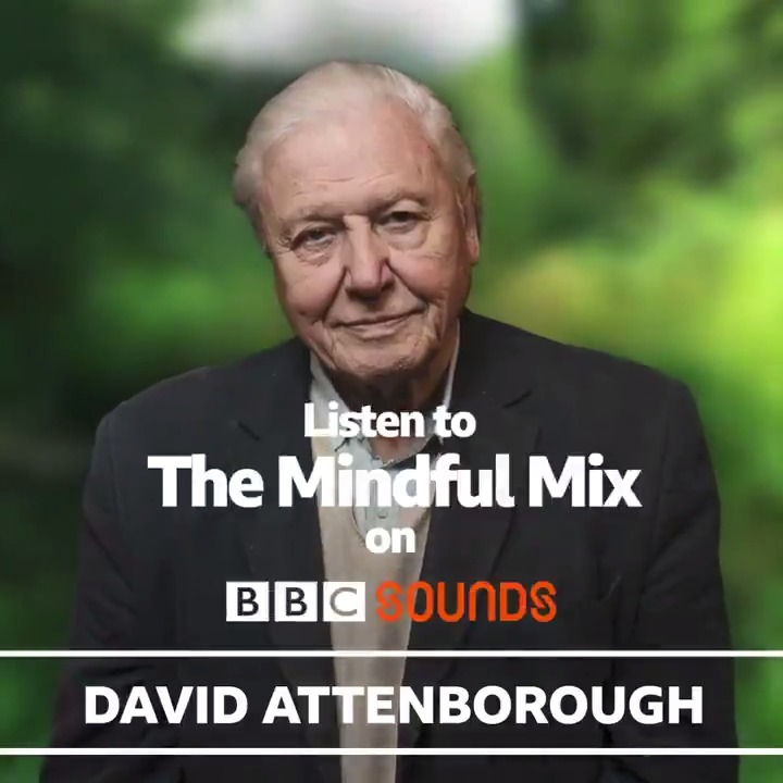 Three hours of tranquility, presented by Sir David Attenborough, on @BBCSounds. Any further questions? bbc.co.uk/sounds/play/p0…