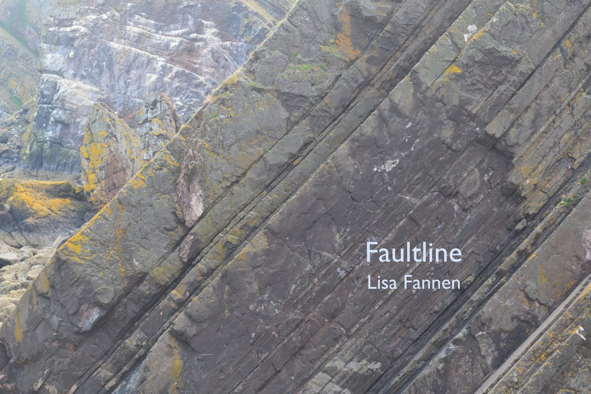 Lisa Fannen has put 22 of her poems, many from her book Faultline - yes, the one we published with her! - to music. Its a benefit release for MORE, so please check it out. lisafannen.bandcamp.com