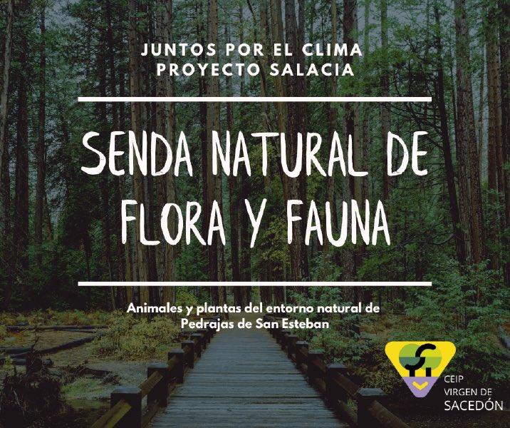 En el #DiaMundialdelaBiodiversidad nuestros #HéroesLibera ya están investigando sobre flora y fauna autóctona de nuestro pinar para elaborar una senda interpretativa. Conocer y estrechar lazos con la naturaleza. #ProyectoSalacia #sostenibilidad #ApS #MedioAmbiente @ApSCyL https://t.co/sKJYTqljgb