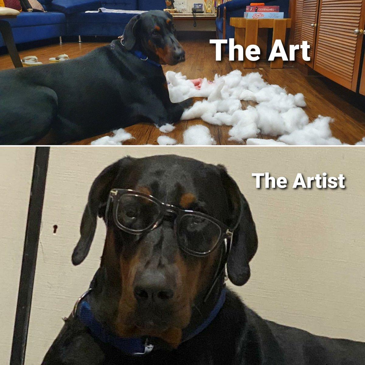 #theart #theartist   My boy after destroying yet another pillow for fun.. #Sniper #dogsduringlockdown   #DogsofTwittter #Doberman #dobermaninfinity #dobermanpride #dogsofinstagram #doglovers #doglove  #dogs #doglife #dogcelebrationpic.twitter.com/yIk54DDBd0