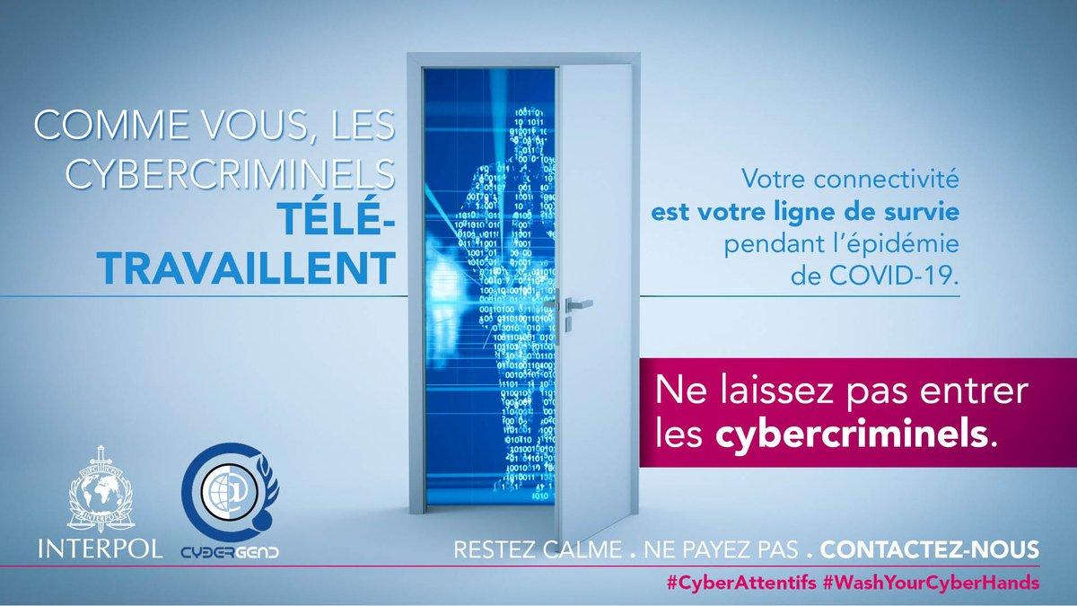 cyberdaycorsica photo