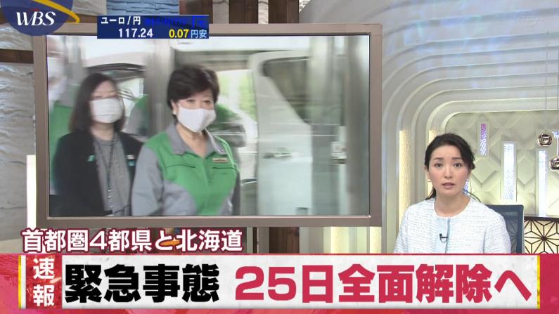 首都圏4都県と北海道「緊急事態 25日全面解除へ」 今の状態が続けば、 残る東京、神奈川、千葉、埼玉の4都県と北海道についても 25日にも解除となる見通し 東京都 26日にも緩和開始へ 5/22 WBS