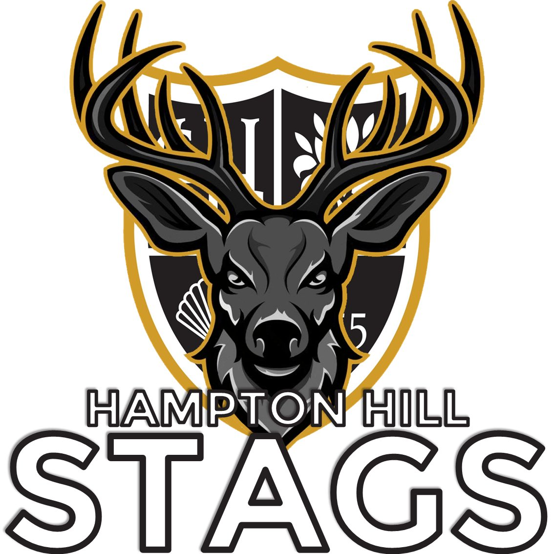 RESULT  The @HamptonhillCC Stags overcome The @KCC2003 Tigers and advance to the Midweek NW Region Final where they'll battle it out against The @waltonwolves https://t.co/69kALML1j6