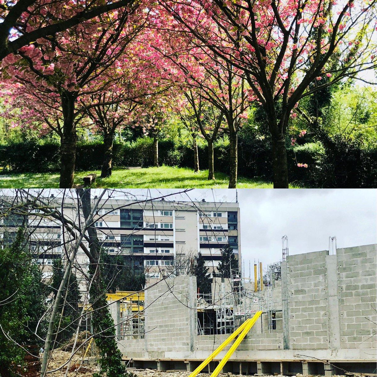 En cette #Journeedelabiodiversite arrêtons de supprimer les espaces verts à bagneux ! #journeemondialedelaterre #nature #ecologie #parc #arbre #HautsDeSeine #environnement #arbre #ecologie #JourneeMondialeBiodiversite #BiodiversityDay2020 #biodiversite #Bagneux #Climat https://t.co/GOFTuThBCp