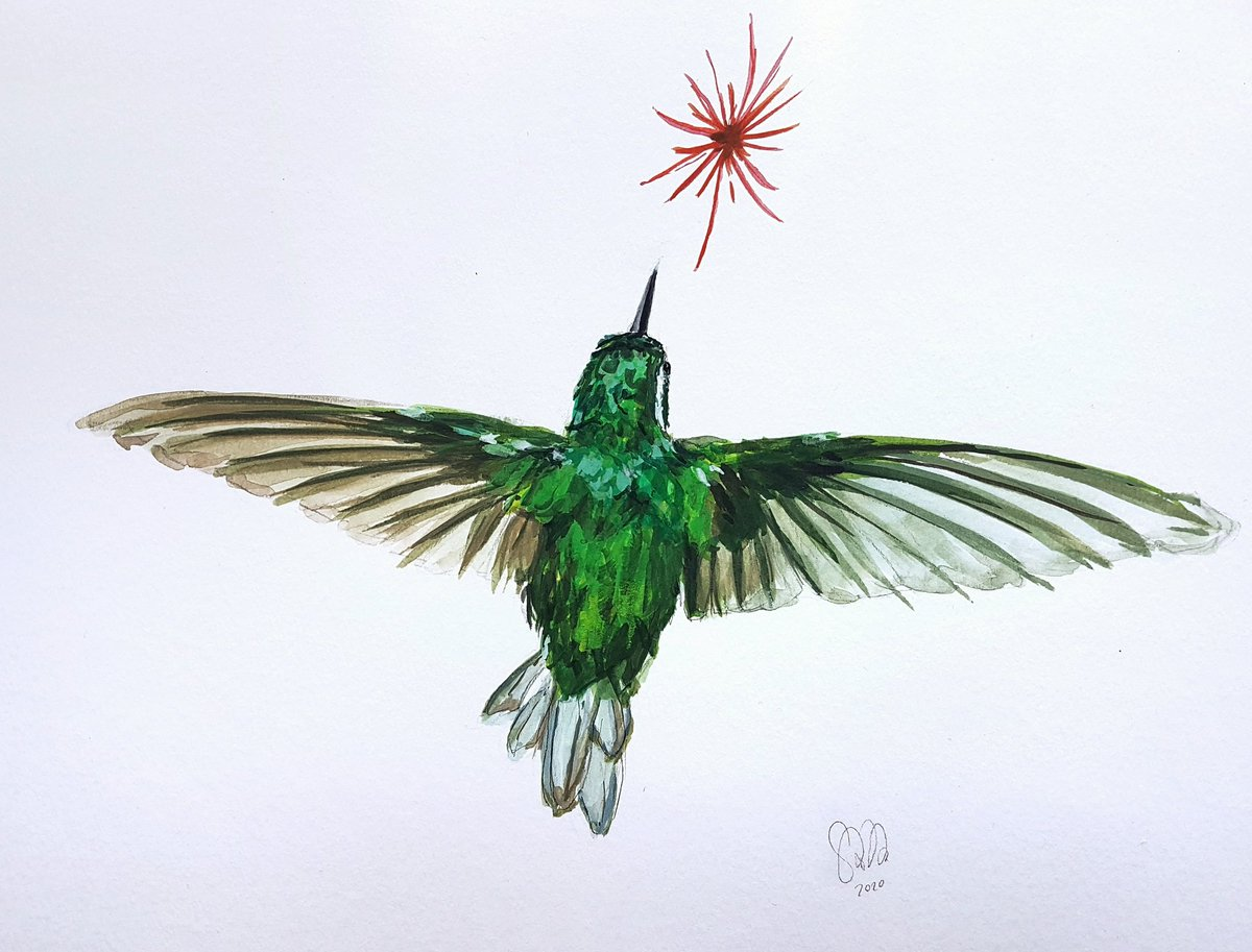 I always wanted to improve on painting flying birds. I'm happy with how this went! #birdpainting #colorfulbird #birdart #hummingbird #gouacheillustration #traditionalartwork #animalillustration #flyingbird #contemporarywatercolor #modern_watercolor #birdillustration #tinybirdpic.twitter.com/kgCj9bAJ2f