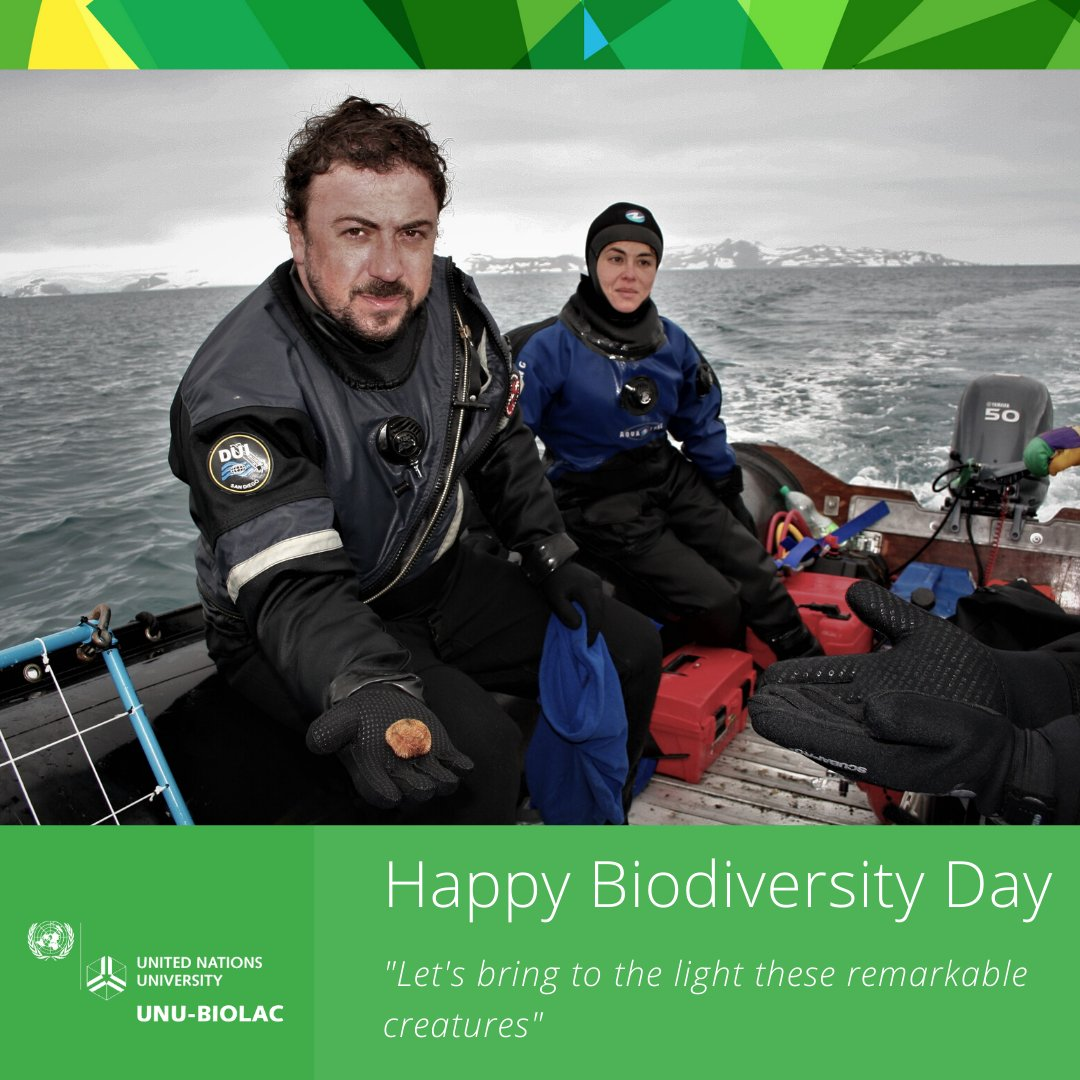 "Continuing with #BiodiversityDay2020 Ellie Poulin, a REGENEC workshops expert, shares:  ""The Southern Ocean hosts an amazing and unique Biodiversity. Scientists take part in Antarctic expeditions to bring to light these remarkable creatures""    #Biotechnology pic.twitter.com/VenbVOnVAf"