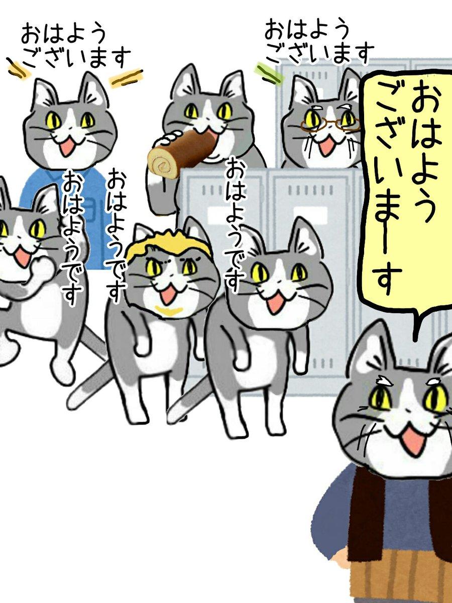 全員(((((知らない猫が会社にいるけど、新しく来た職人さんだと思うのでヨシ!!!!!))))) #現場猫