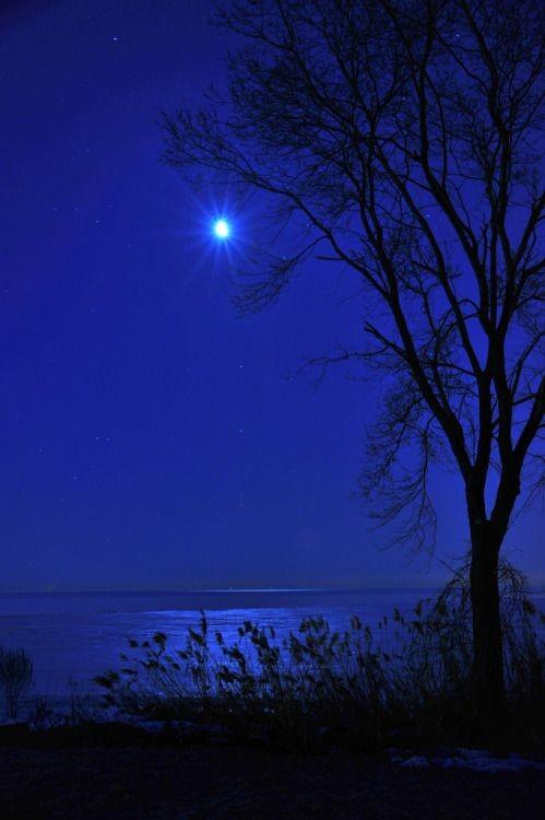 Good night everyone. #Moonlight #friday pic.twitter.com/NPdpcMXu1G