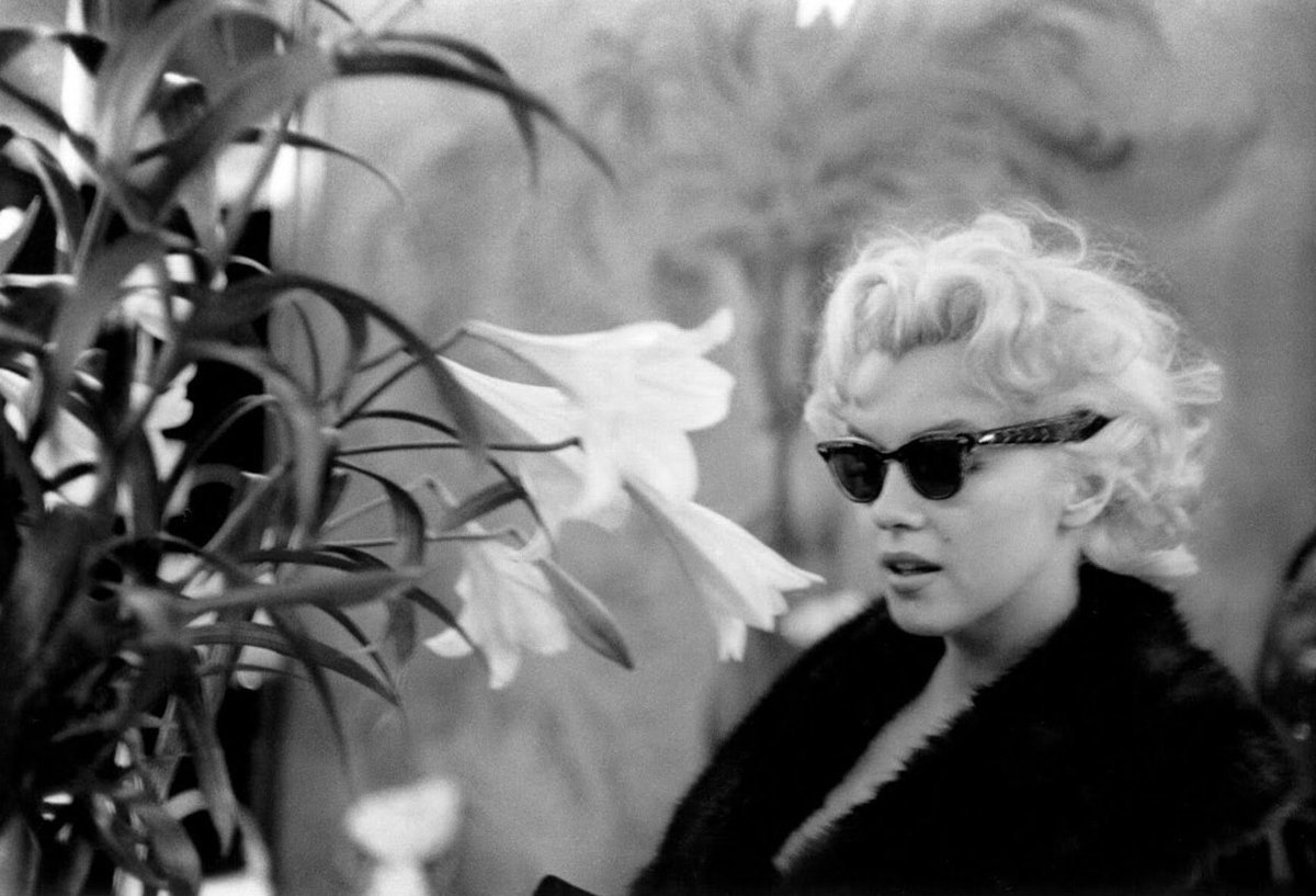 """""""I never knew anyone who came close to Marilyn in natural ability to use both photographer and still camera. She was special in this, and for me there has been no one like her before or after. """" © Eve Arnold (American #photographer, 1912 - 2012) #MarilynMonroepic.twitter.com/ES6OQqPmzv"""