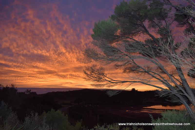 Good morning! A dawn worth sharing :) #landscapephotography #sunrise pic.twitter.com/qcOWtZ2KzI