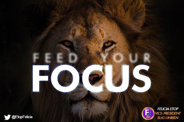 Feed your Focus #Focus pic.twitter.com/bIJoQUPFqf