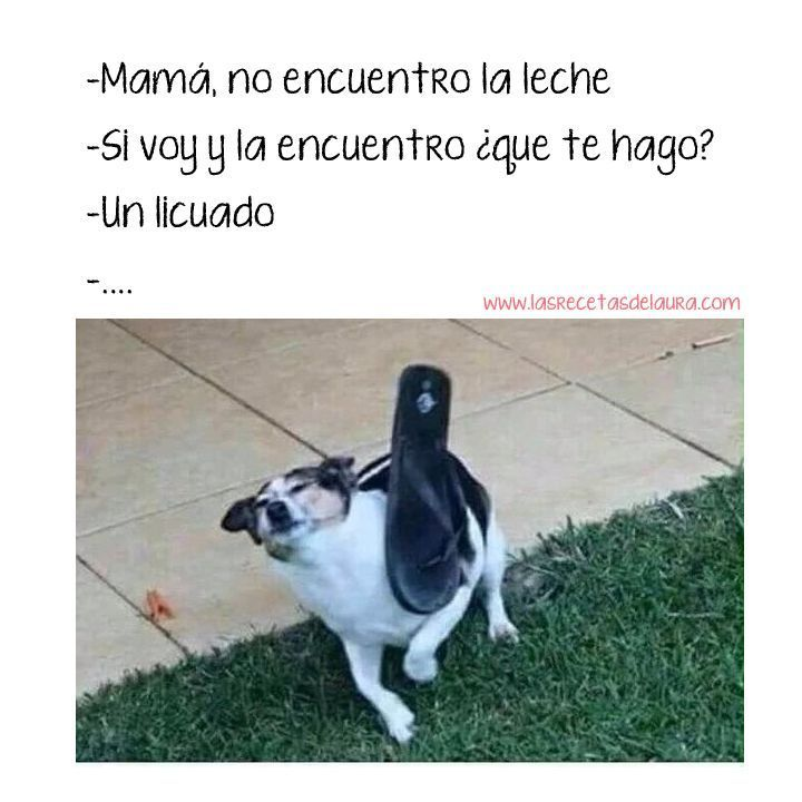 jajajaja descarado!  #funny #lol #lmao #lmfao #hilarious #laugh #laughing #tweegram #fun #crazy #silly #witty #instahappy #joke #epic #instagood #instafun #funnypictures #haha #humorpic.twitter.com/WH754EKXCD