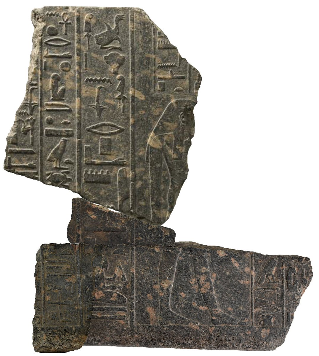 Thank you to Aidan Dodson for the wonderful lecture on Amenhotep son of Hapu tonight, which included this new reconstruction of fragments from @TheEgyptCentre, @World_Museum, and @ArtHistoryBRU. If you missed it, you can watch it here: https://t.co/FD5Yqdqgdu https://t.co/Bh1DJ7xugP