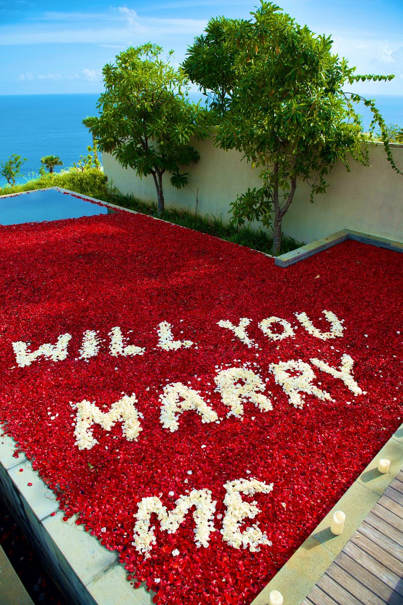SHE SAID YES!!! https://t.co/cd8l0erexe
