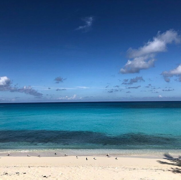 TTHMarketing: RT BigGameClub: Bimini is waiting, hopefully nottoo much longer.  Happy #fab foot Friday!  Today's feature is by miamicatamaran  #bimini #biminibahamas #bahamas #bahamasmarina #realbimini #biminibliss