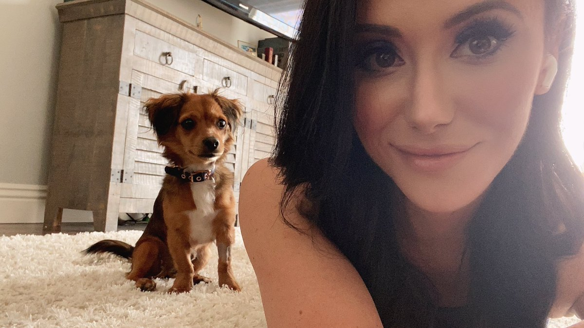 Got Kevin back from the vet in time for the #AEWHeels Zoom Party. Thanks to everyone that sent him puppy prayers & THANK YOU to all the amazing people that showed up! A tribe was born today & I'm so excited to see what happens next! Thank you @TheBrandiRhodes  @AEWrestling<br>http://pic.twitter.com/AQteUJlNti