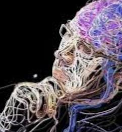 El cerebro es egoísta por biología: activa más neuronas al pensar en sí mismo, que cuando se piensa en otra persona. https://t.co/ovBKsgndBJ