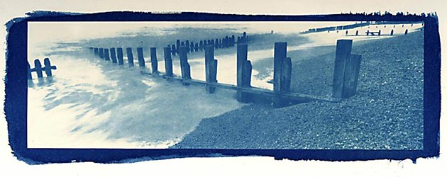 Morning all, heres Peter Greenhalfs Cyanotype contact print of Rye Harbour. @ryeharbour_NR @SussexWildlife #ryeharbour #SussexWildlifeTrust
