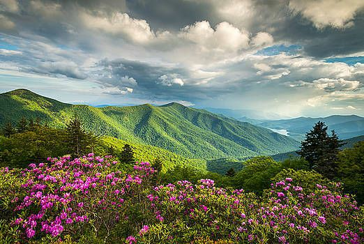 Good morning/afternoon/evening my lovely friends  Nice Saturday and a relaxing, happy weekend...  #photography #nature #landscape #spring #Flowers #mountains  by Dave Allenpic.twitter.com/LP4AFViQnP