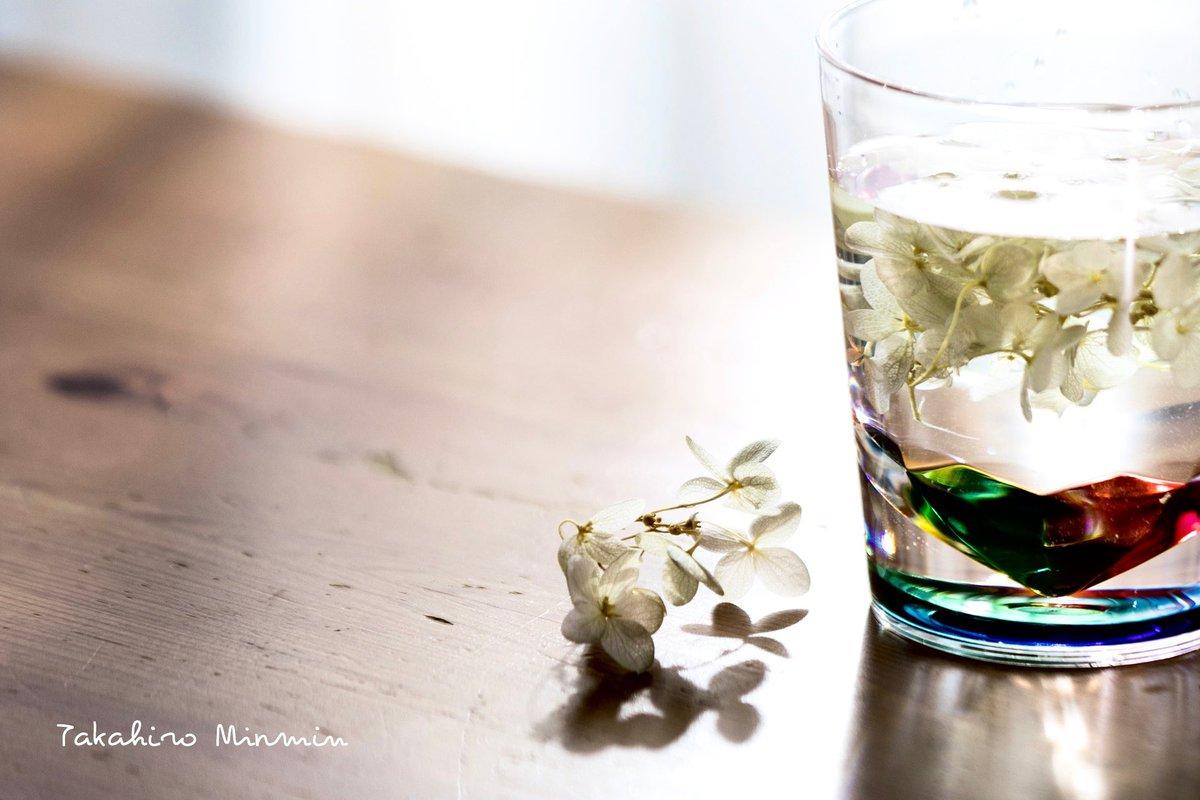 『Glass』  #coregraphy #photography  #photo #キリトリセカイ #写真好きな人と繋がりたい #写真で奏でる私の世界 pic.twitter.com/LFEcHr3zJJ