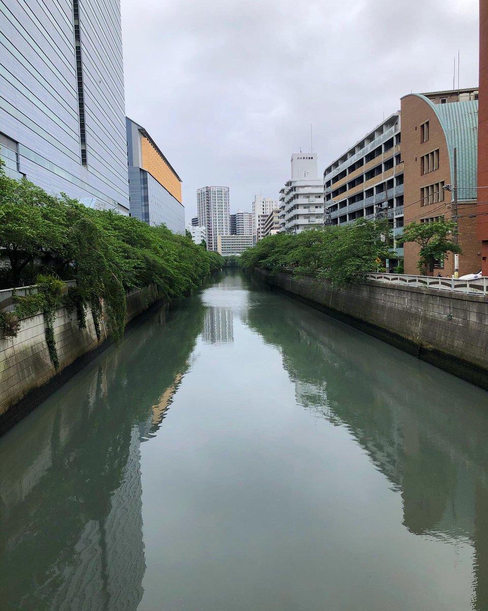 朝のウォーキング途中に通った橋 #目黒区 #目黒川 #太鼓橋 #tokyo  #meguroriverpic.twitter.com/LyNBacOOBV