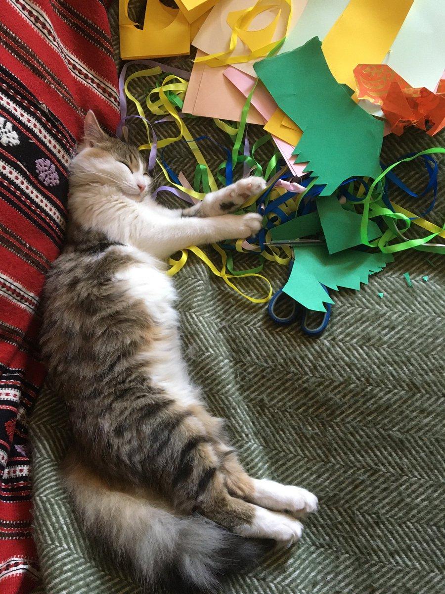 Sleeping on the job #crafting #Caturdaypic.twitter.com/7sB67GxHG0