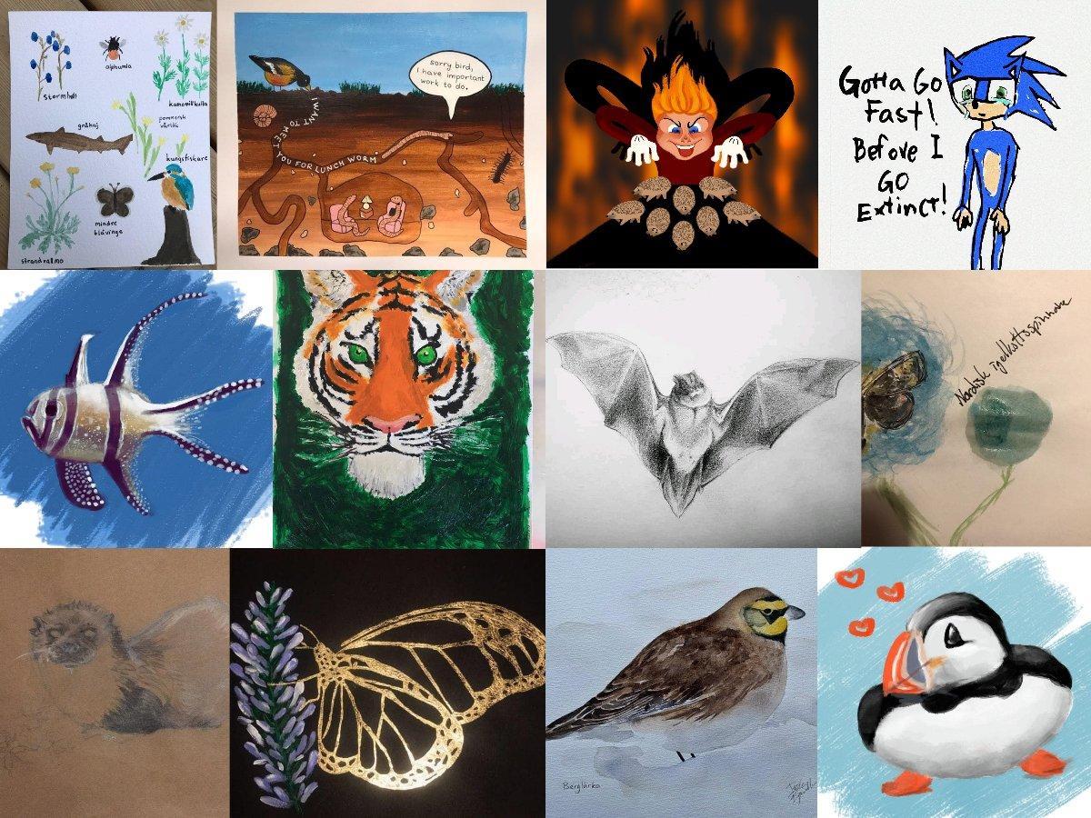 Igår var det biologiska mångfaldens dag! Tillsammans har vi uppmerksammat några av de 1 000 000 arter som är utrotningshotade. Även på Gustaf Adolfs Torg blev det några teckningar! #FridaysForFuture #klimatstrejk #WorldBiodiversityDay @KlimatsamlGbg @FFF_Sweden