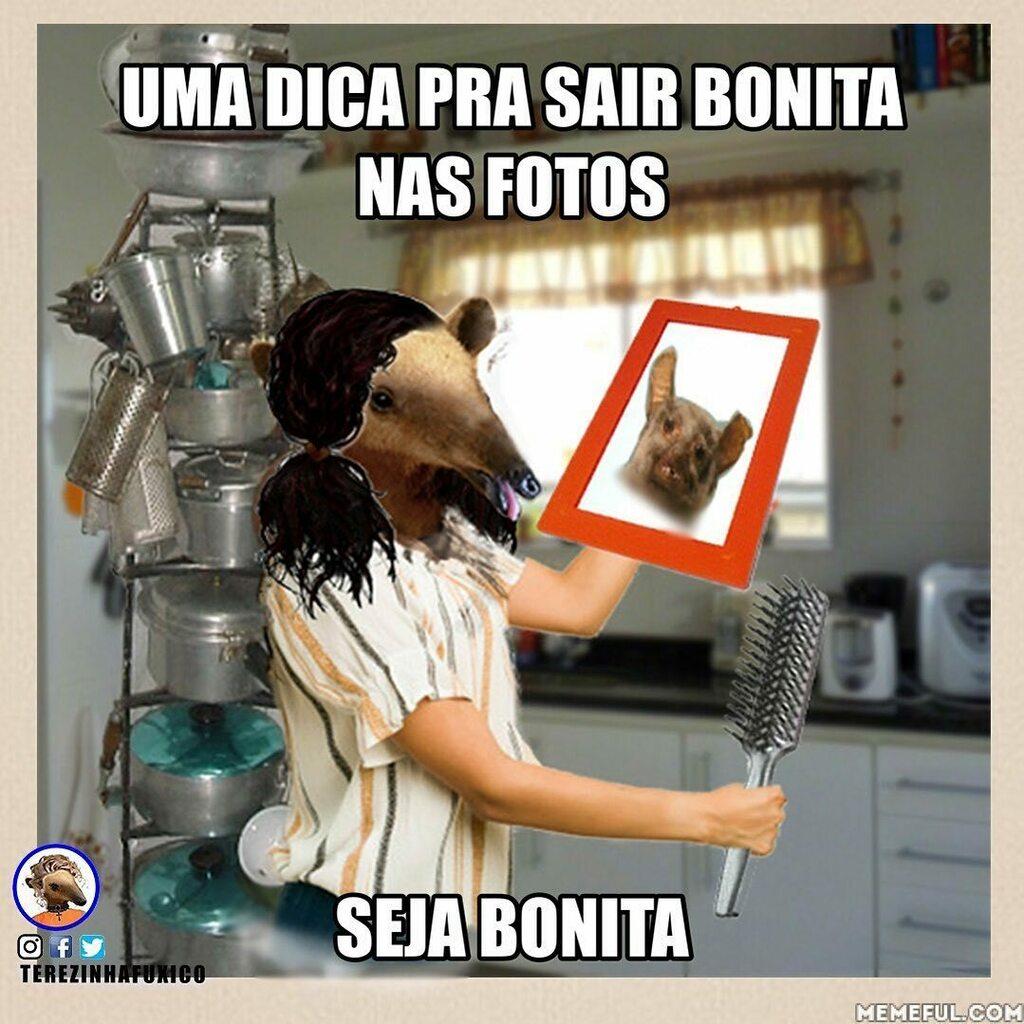 Oi povo lindo !!!  Me segue !  #terezinhafuxico #bloguer #joaopessoa #recife #fortaleza #ceara #nordeste #nordestebrasileiro #memesbrasil https://instagr.am/p/CAiEVJWFUCS/pic.twitter.com/PnCMlfg8JV
