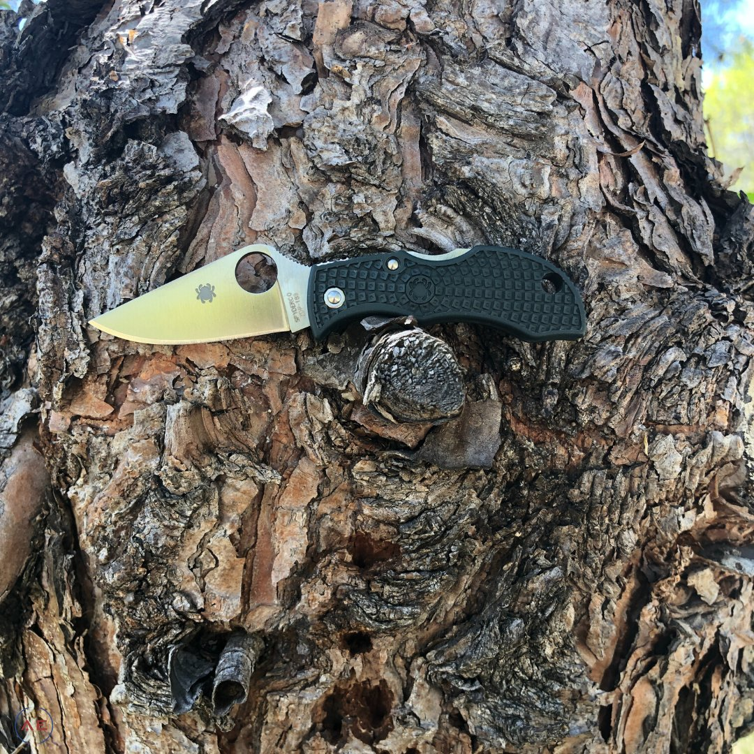 Spyderco ManBug . . #AmericanEdgeKnives #SpydercoKnives #Spyderco #SpydercoManbug #EDCKnives #KnifeLoversOnlypic.twitter.com/pzMCG3IClh