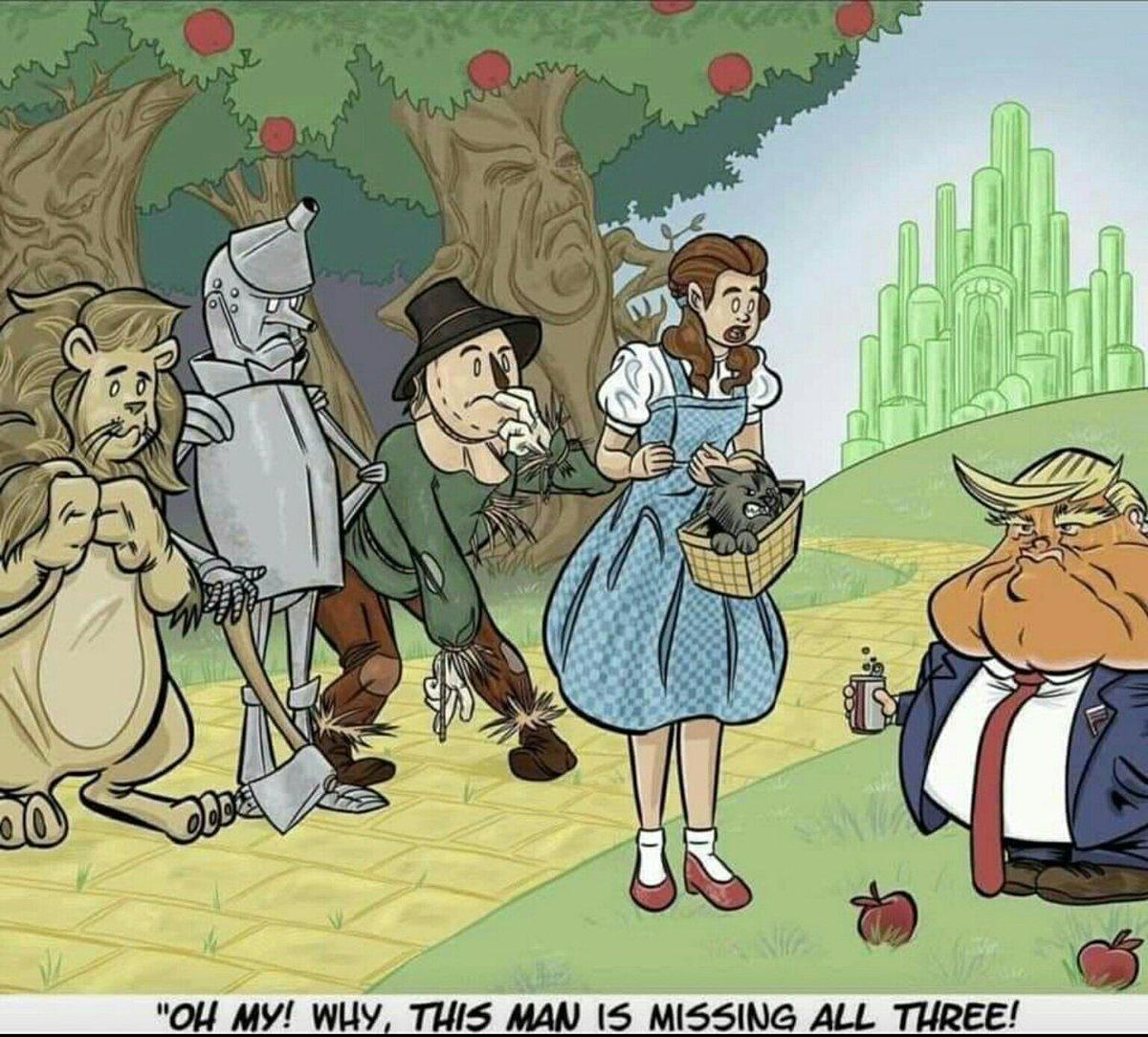 @KLoeffler @realDonaldTrump @JoeBiden You arent very intelligent, are you?