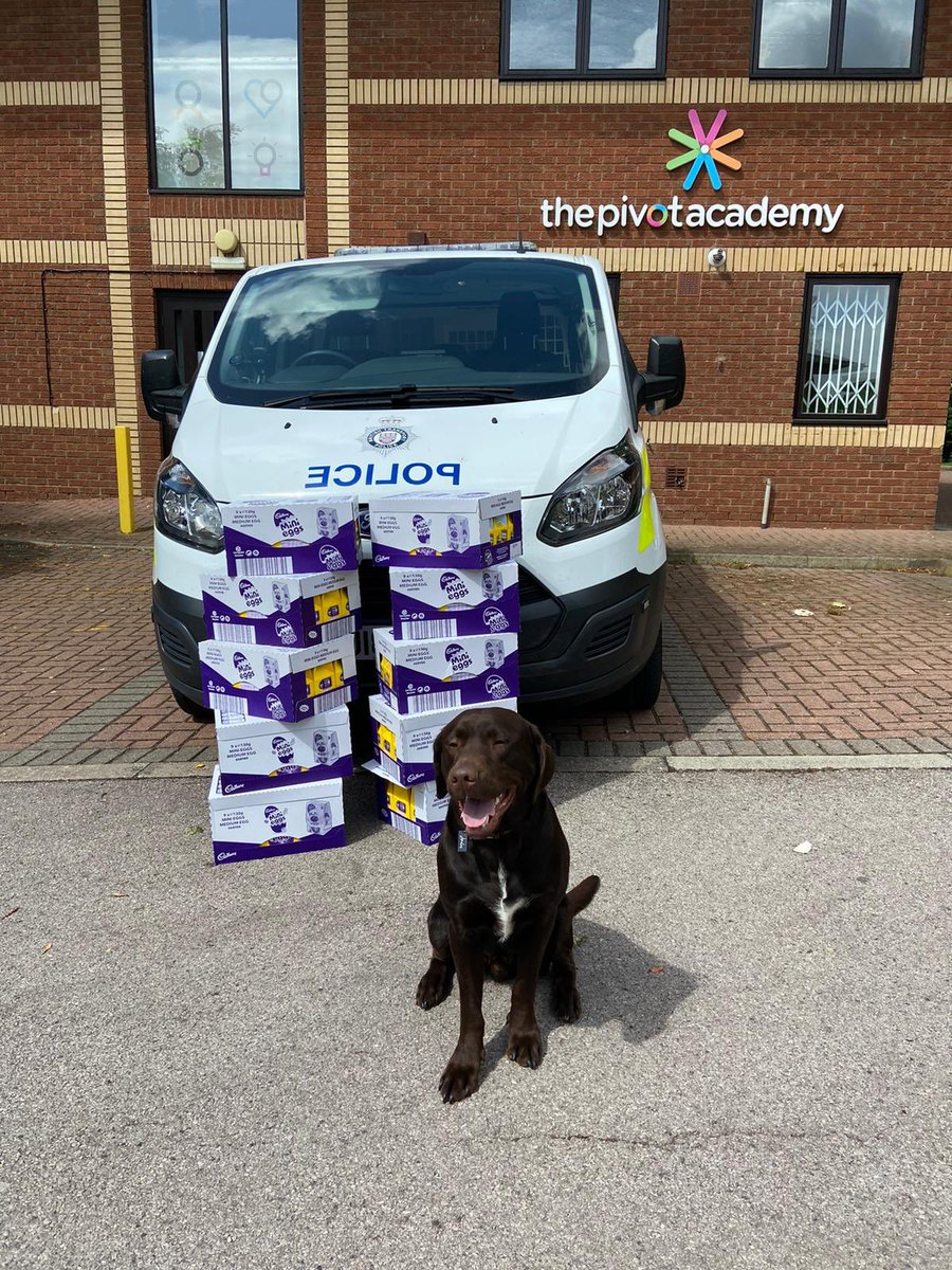 S/Insp Chamley from @BTPWestYorks arranged for some Easter eggs from @BTP to be delivered to @PivotLeeds to distribute to children on our behalf. Looks like we may have a new officer & a prisoner to take away too 😊 #NotJustCrime #ShesTheRealEasterBunny #SpecialContribution