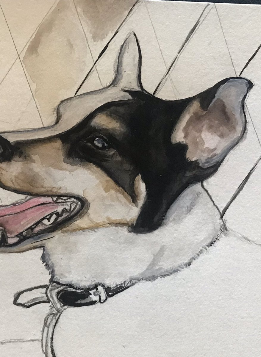 Work in progress, but stoked on this ear  #watercolorpainting #wip #petportraitpic.twitter.com/hVKoEh5gMJ
