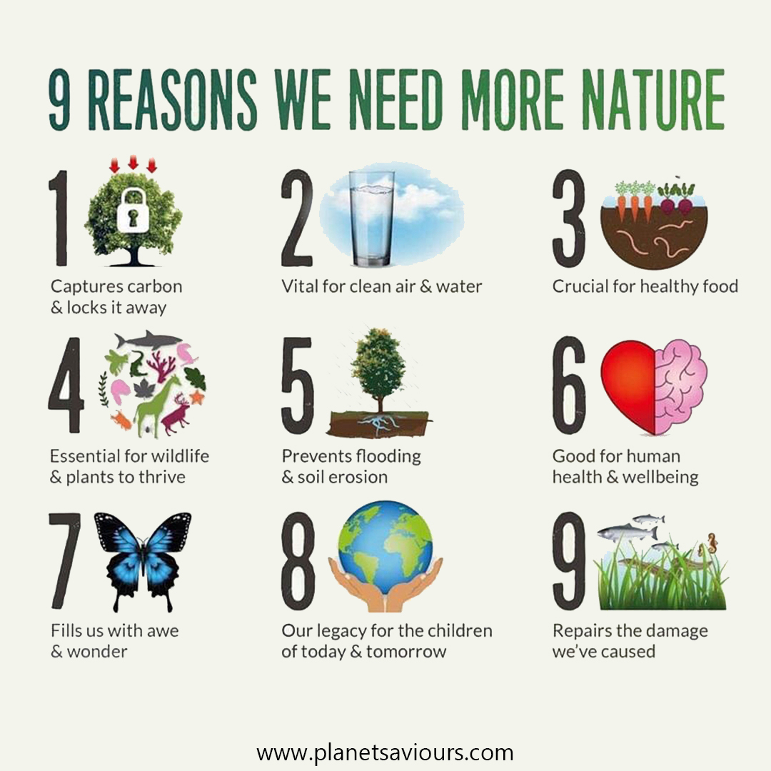 9 reasons we need more nature   #planetsaviours #ethical #sustainable #nature #water #carbon #cleanair #plants #pollution #ecofriendly #wildlife #healthyfood #children #reasonspic.twitter.com/qX47f6Wmtu
