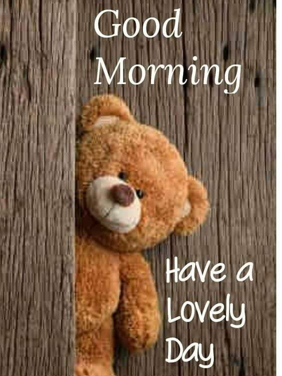#inspirationalquotes #dailymotivation #dailyquotes #dailyinspiration #goodthoughtsonly #goodvibes #marathimotivational #picturequotes #picturequotesoftheday #goodmorningquotes #familyquotes #lifequotespic.twitter.com/E3mboCpewj
