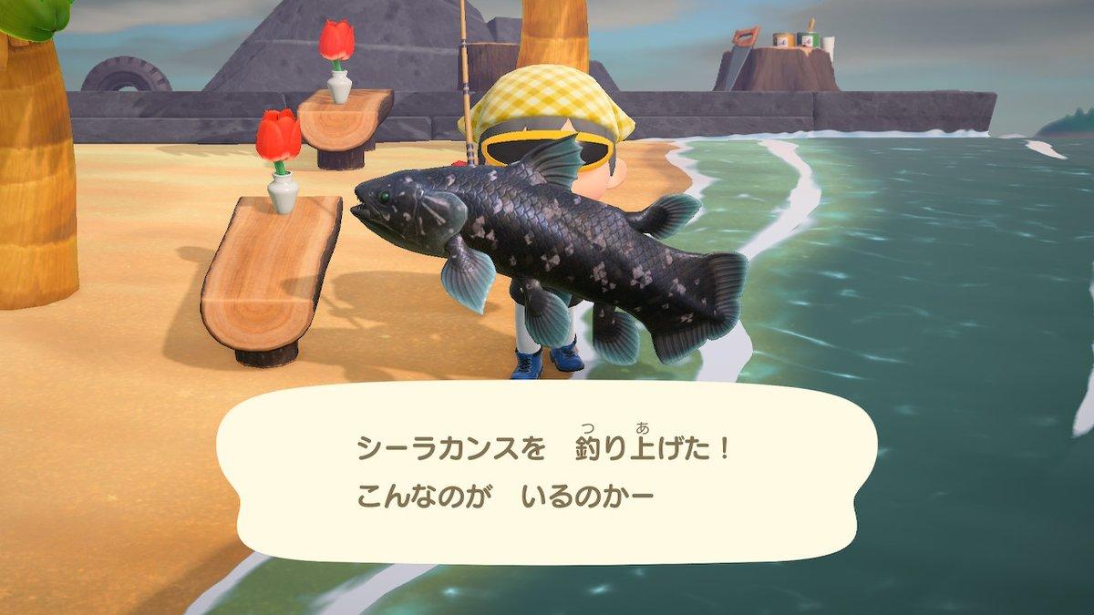 魚 とび森 雷の日