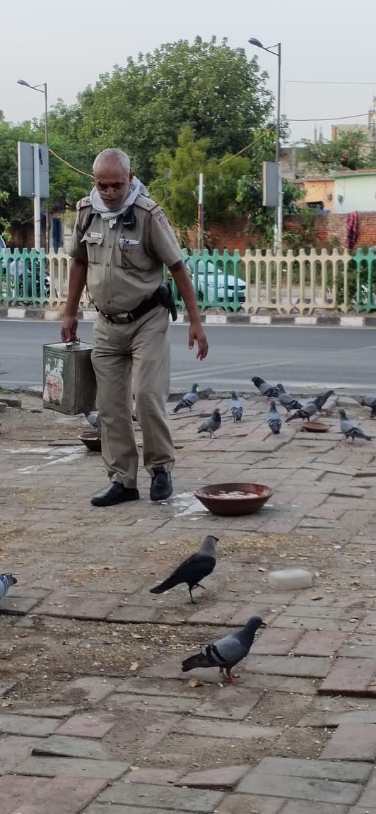 Someone sent these pictures of ASI Ratan Singh to SHO Amar Colony. पक्षियों को पानी पिलाते हुए ASI रतन सिंह Somewhere in East of Kailash. #DelhiPolice #DilKiPolice @DelhiPolice