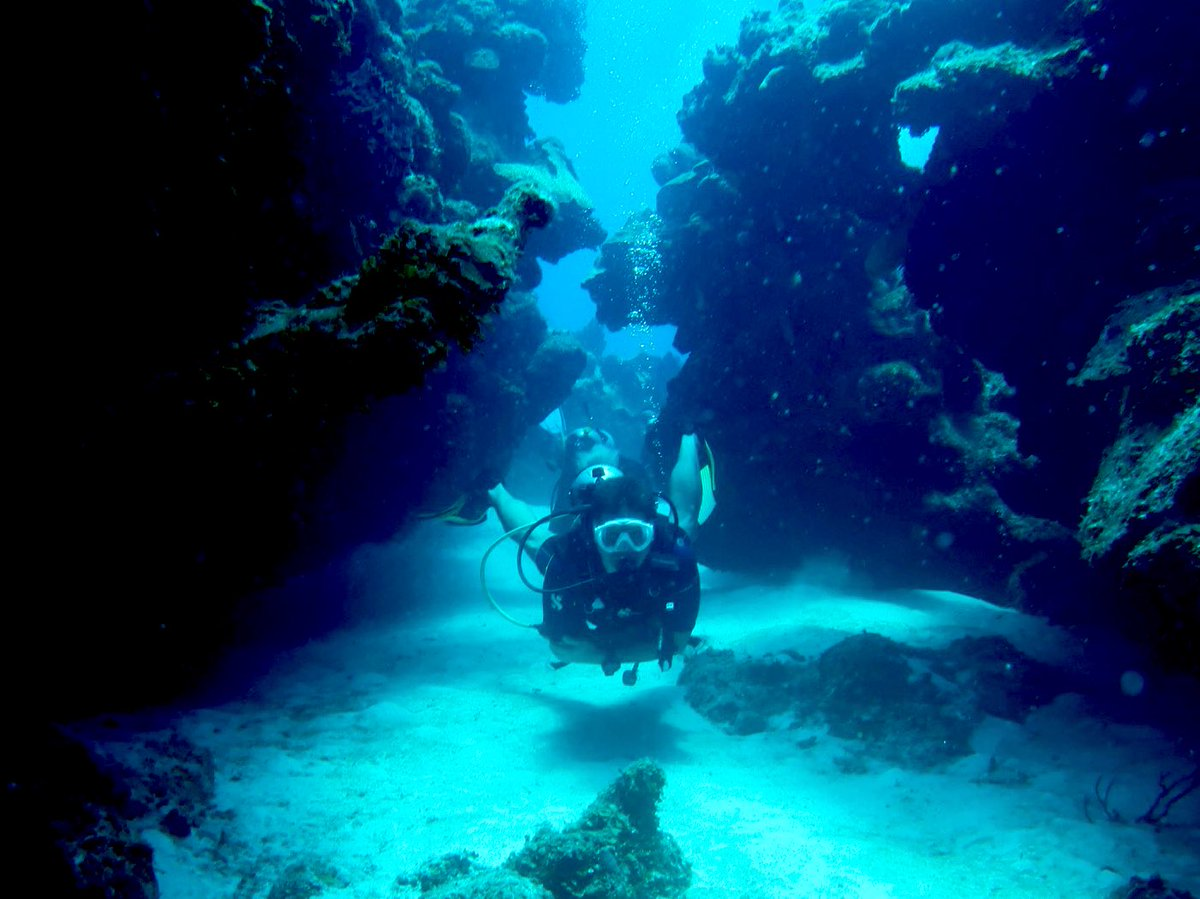 It feels better          to do stuff             than to     have stuff  #SundayVibes #NatureLovers #ScubaDiving #Mindfulness pic.twitter.com/kfbCLxQDQq