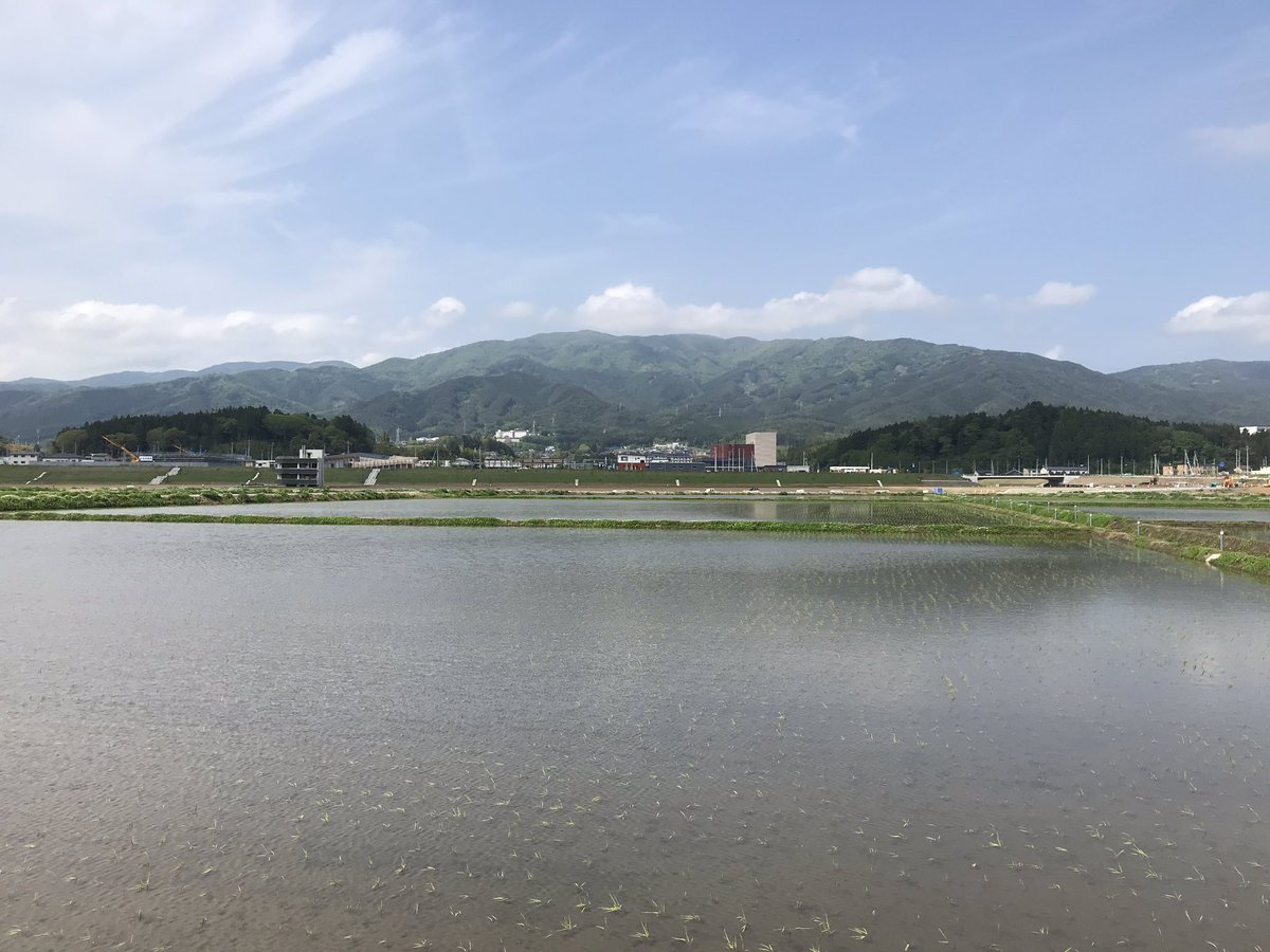HAMANASU_RX photo