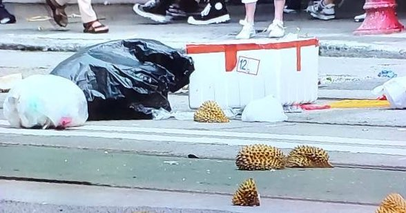 New at #HongKongProtests: durian husks thrown on the road in Wan Chai to block roads   #HongKong https://t.co/e0oKI0kkbk