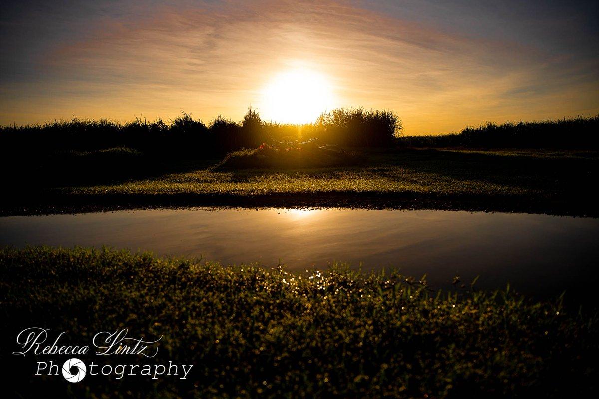 Sunrise in Giru. #Townsville #photographer #family #photography #queensland #newborn #newbornphotography pic.twitter.com/Rtk8rHxjy9