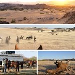 Image for the Tweet beginning: On #Safari in #Namibia, day
