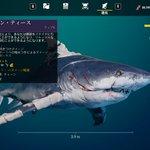 サメになって人間を食うゲーム?!レベルアップでヒレに外骨格が付いたりやりたい放題で楽しそう!