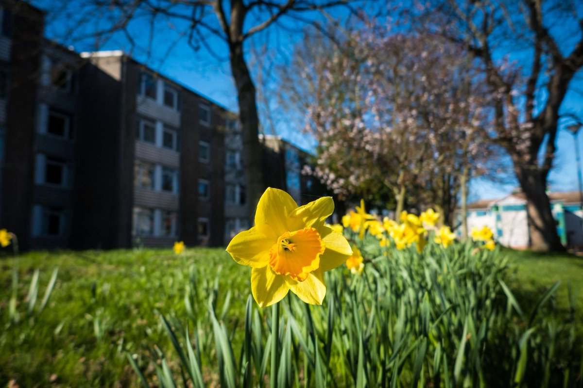 Today is Eid al-Fitr! We'd like to wish all our alumni, staff & students who are celebrating the Festival of Breaking the Fast a great day. We know this year's Ramadan has been very different due to the lockdown but we hope everyone is able to celebrate appropriately! #ABDNfamily https://t.co/2RTbRDwKjQ