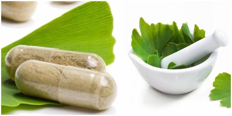 medicamento gingko biloba pregnancy que serve