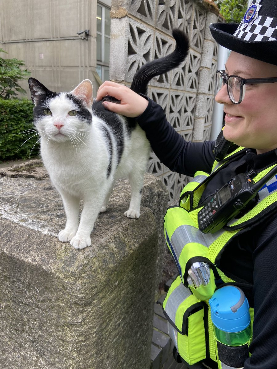 Ever wondered what constitutes to the 'purr-fect' patrol? Well, today we were 'fur-tunate' enough to patrol with this 'claw-ver' cat to ensure that London Bridge remains safe from not just crime, but also mice! 🐭 See you another time, Pawfficer! 😸 #CatsOfTwitter