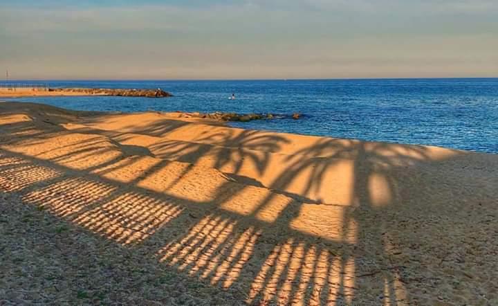 A Caldes, fins i tot les ombres de les palmeres tenen ganes de mar ♥️ https://t.co/H7yM08gPU9