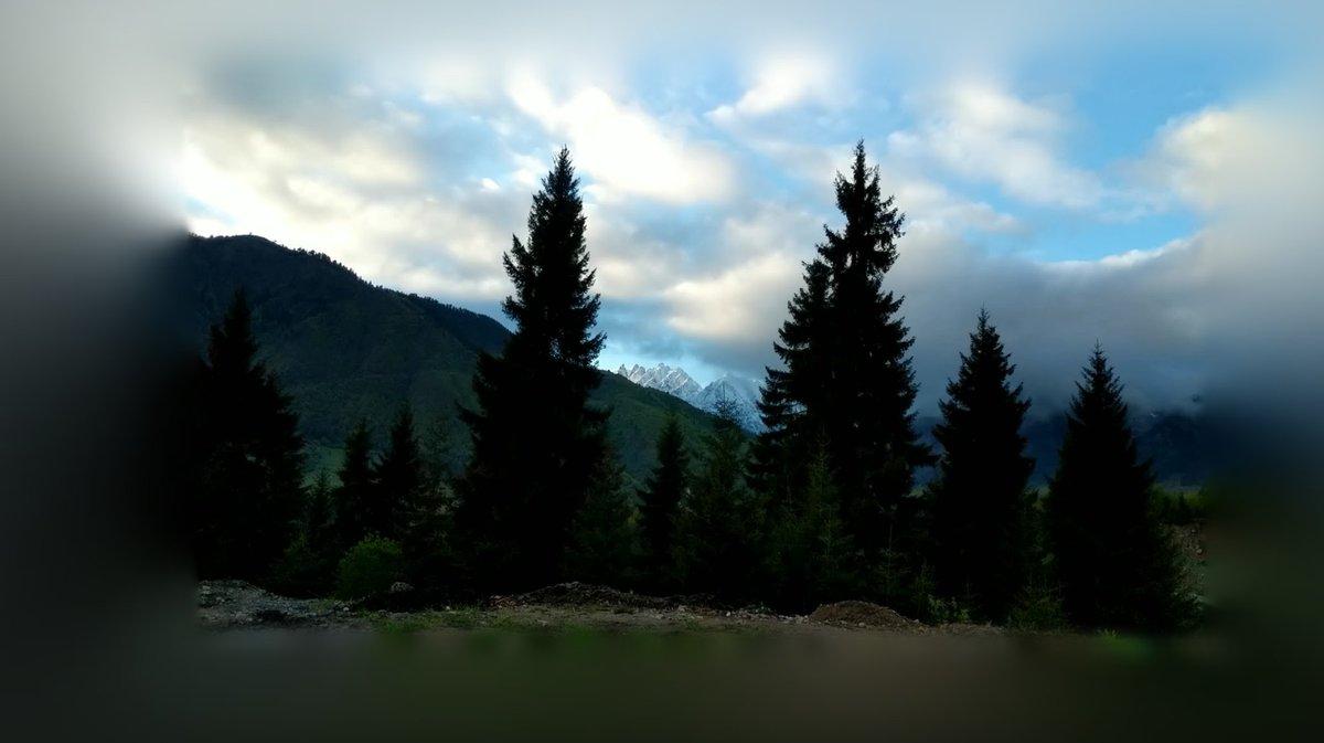 Mestia Nature  #wilderness #svaneti #georgia #georgianmountains pic.twitter.com/sfevkg7akG