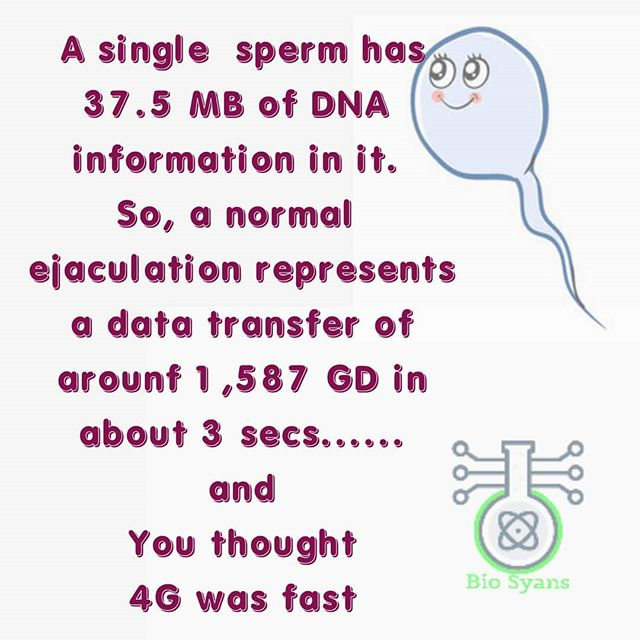 Follow us @bio_syans . . . Did you know this? . #sperm #spermsquad #idioticsperm #4g #4runner #fact #facts#funnymemes #sciencefun #knowledgeispower#biolo #ejaculation #biotechnologystudents #molbio #humanphysiology #reproduction #reposting… https://www.instagram.com/p/CAhmz4nlkHI?utm_source=dlvr.it&utm_medium=twitter …pic.twitter.com/r6n4mmjxl5